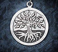 Keltische Sternzeichen (15 Artikel)