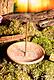 Yggdrasil Weltenbaum Runde Stäbchenhalter, verschiedene Farben